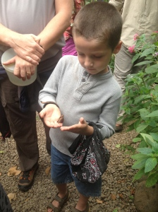 Despite his tendency to be rather rough, Tristan was very gentle with the butterflies.