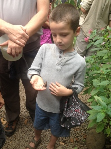 Tristan is not as much as a bug aficionado as Kara, but he always has a good time at the Monteverde Butterfly Garden.