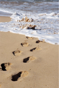 Where in the world will you leave your foot prints?